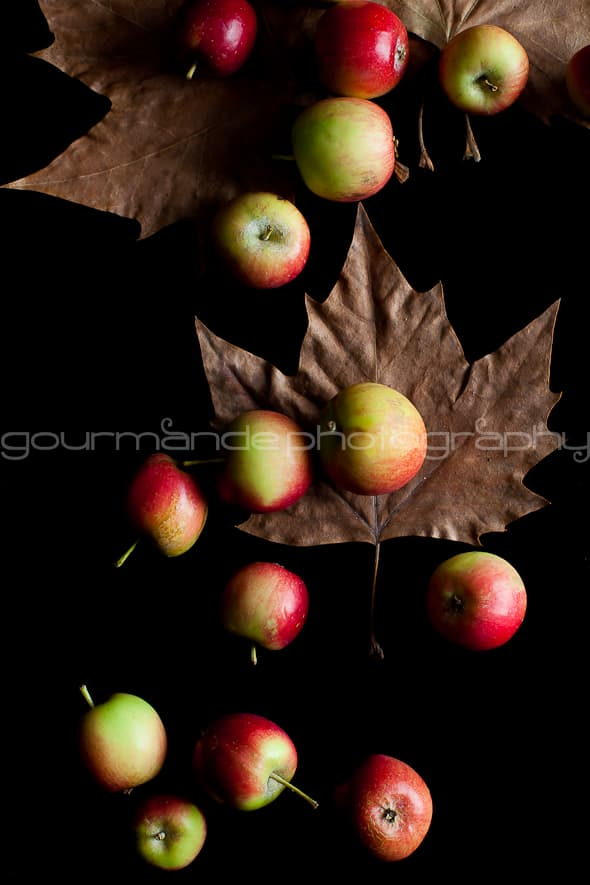 crab apples falling 1 of 1 2 Imagining | A New Year