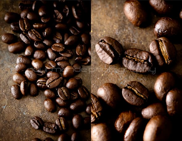 coffee bean diptych