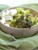 Zucchini Quinoa and Microgreens Salad