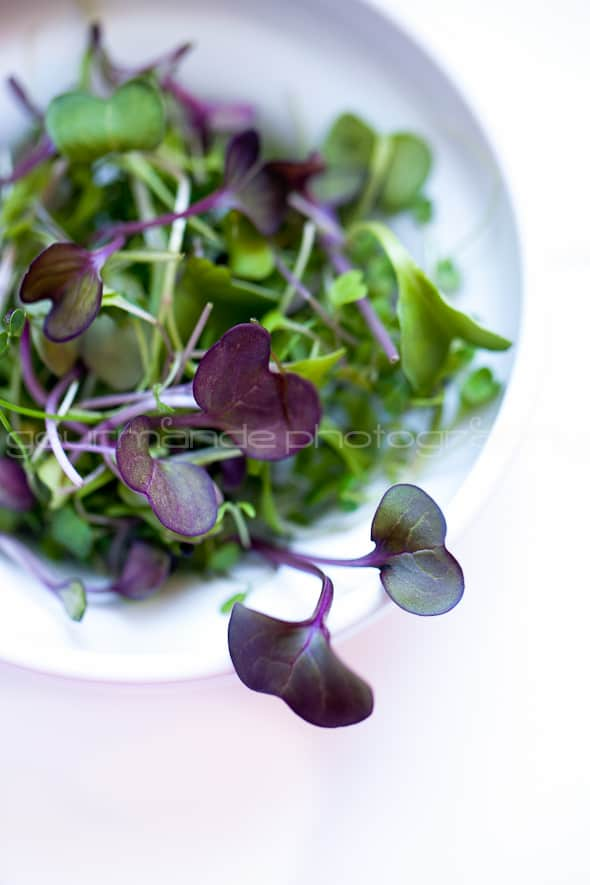 microgreens zucchini quinoa salad with microgreens | tender greens