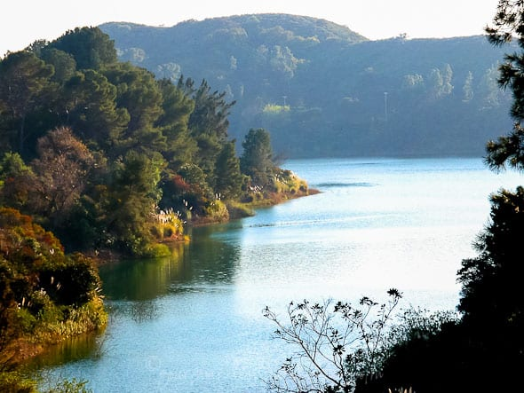 Hollywood Reservoir, Gourmande in the Kitchen, Picnic, Picnic for the Planet, Earth Day