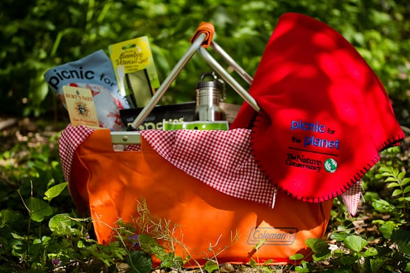 Picnic for the Planet Basket Celebrating Earth Day with a Picnic for the Planet | Picnic Basket Giveaway