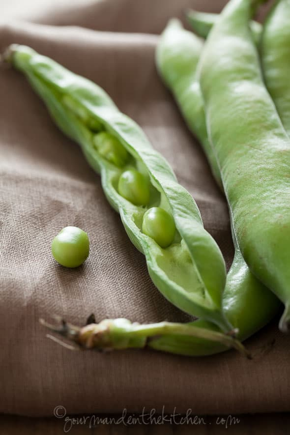 Fava Bean in the shell, Gourmande in the Kitchen, Sylvie Shirazi, food photography