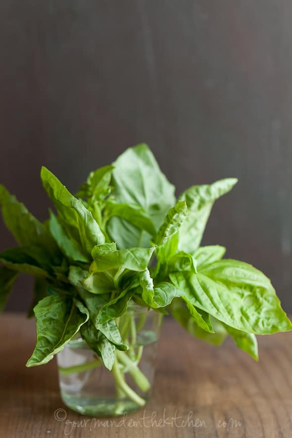 fresh basil, sylvie shirazi photography, gourmande in the kitchen, food photography