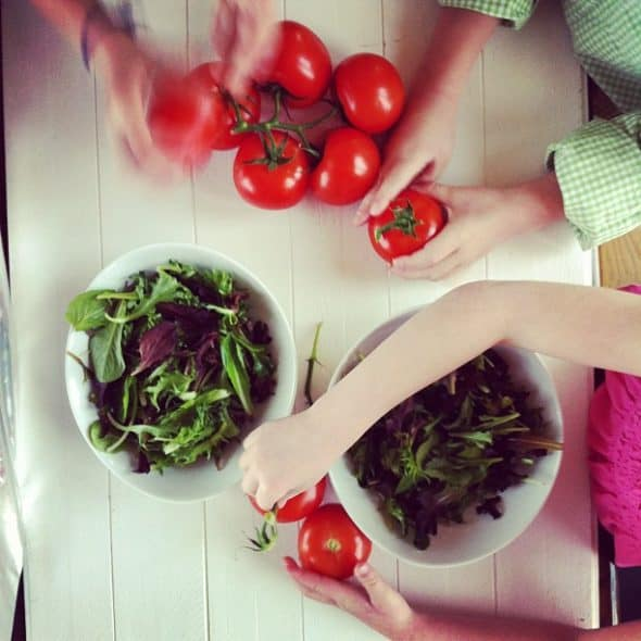 tomatoes and salad