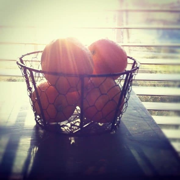 lemons in sunlight