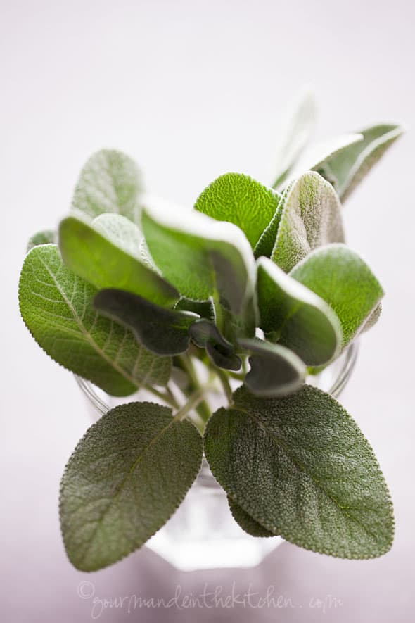 sage leaves, sylvie shirazi photography, food photography, los angeles food photographer, gourmande in the kitchen