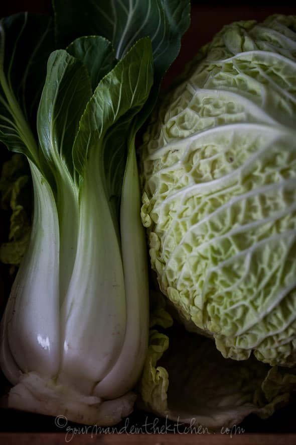 cabbage, bok choy, vegetables, sylvie shirazi photography, food photography, gourmande in the kitchen, los angeles food photographer