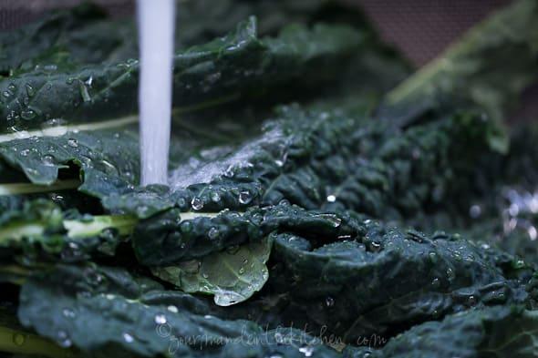 kale, winter greens, lacinato kale, dinosaur kale