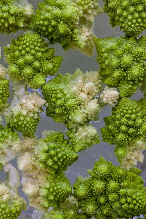 romanesco cauliflower, roman cauliflower, Italian cauliflower