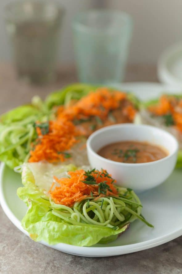 Cucumber, Carrot and Kelp Noodle Lettuce Wraps Close Up Side