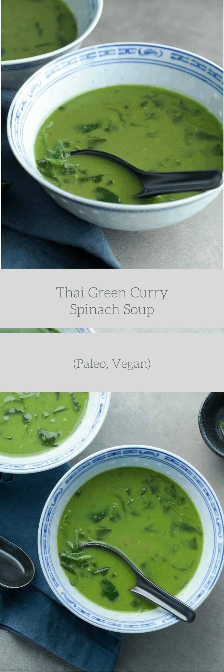 Thai Kitchen Spring Onion Soup Recipe